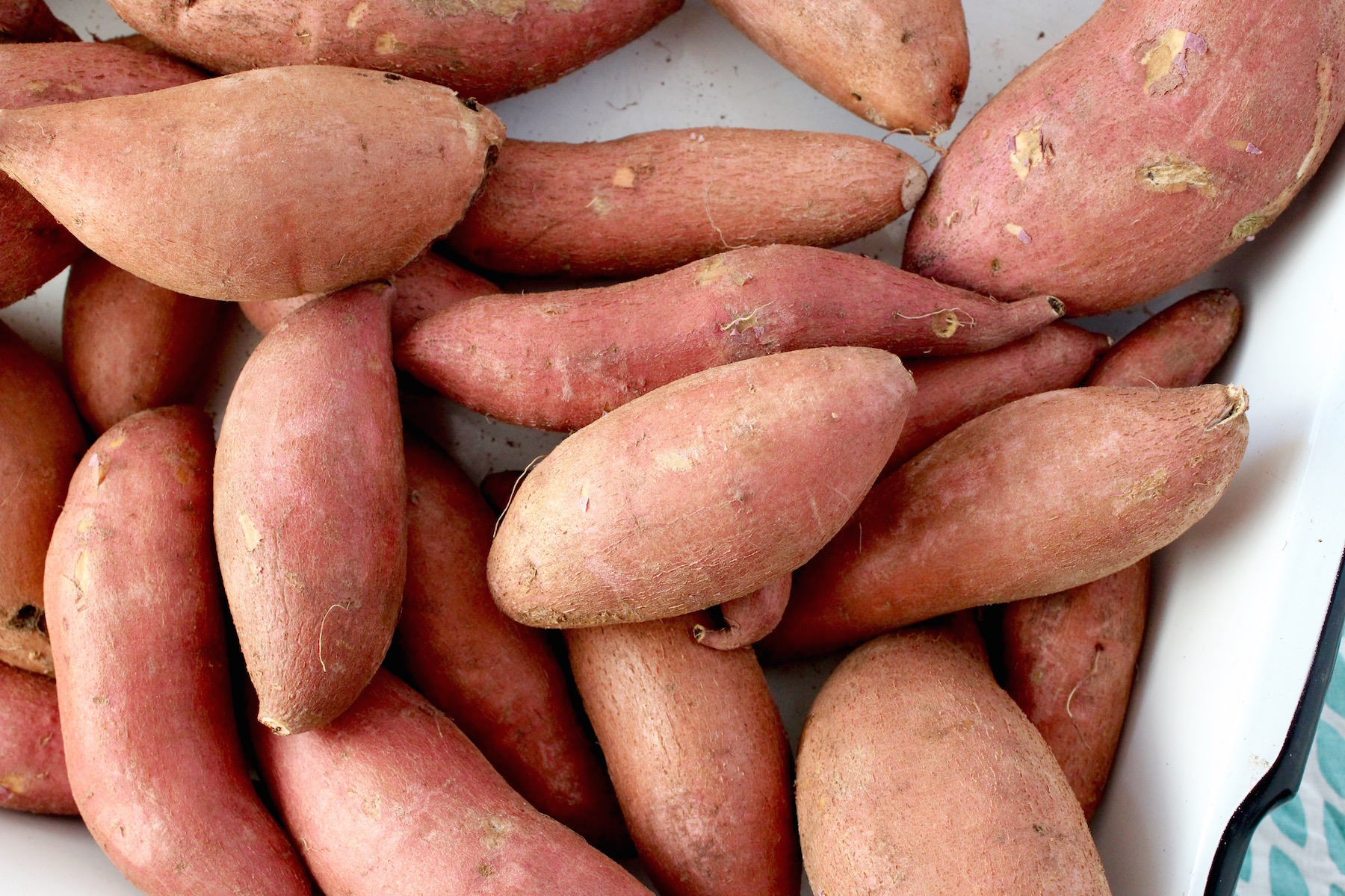 Sweet Potatoes from Garden