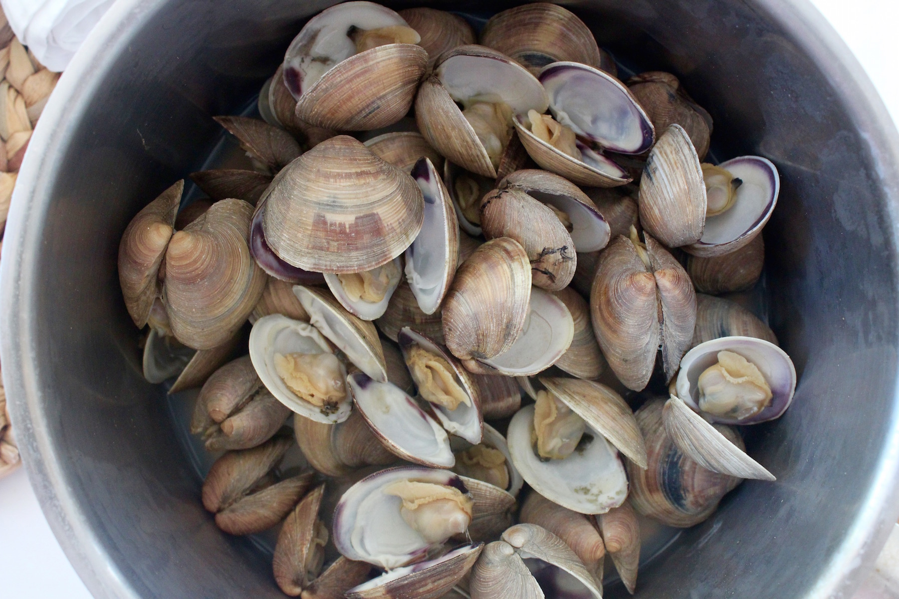 Littleneck clams after steaming