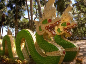 The Wat Dragons