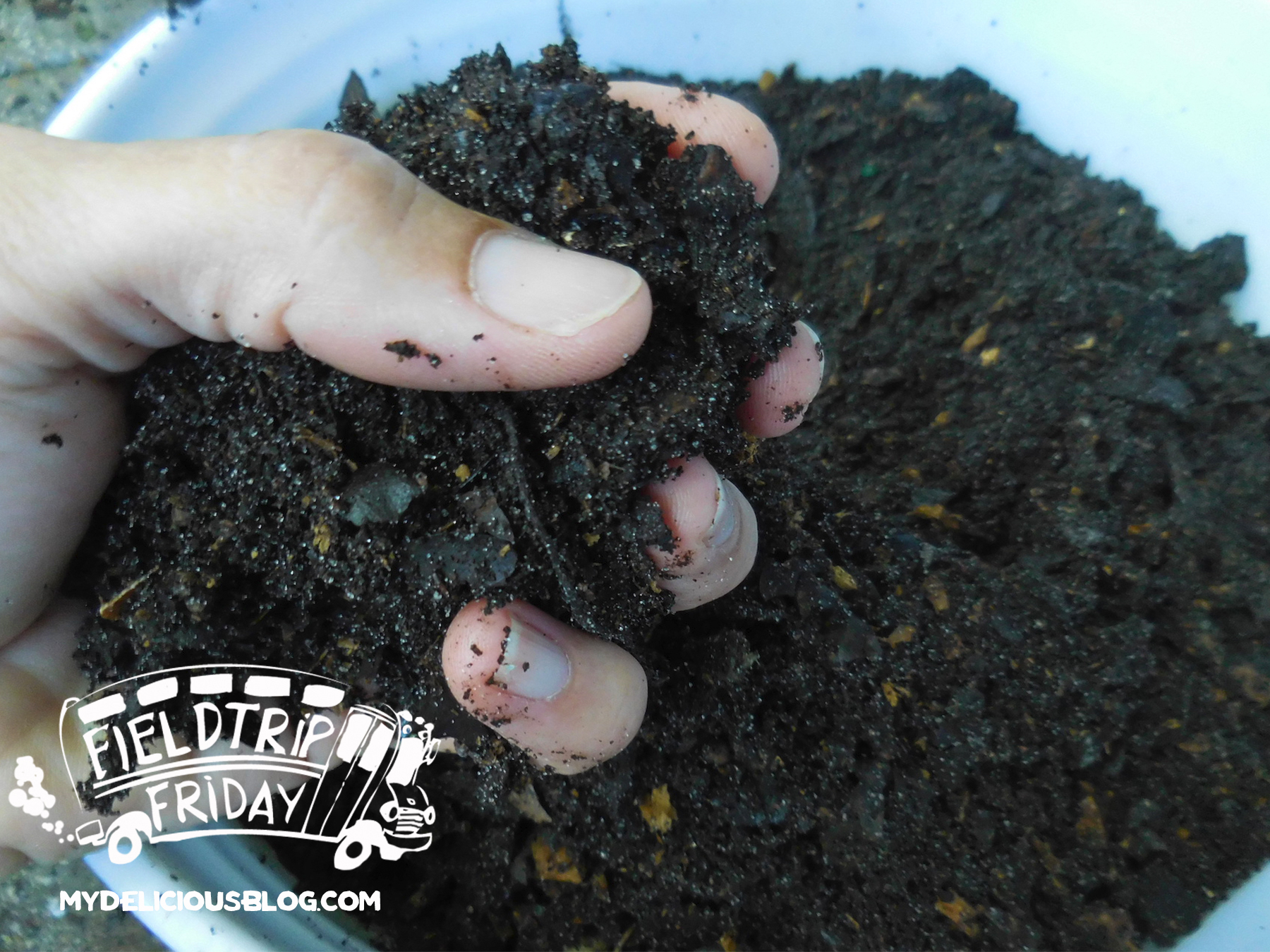 Field Trip Friday Sunshine Compost